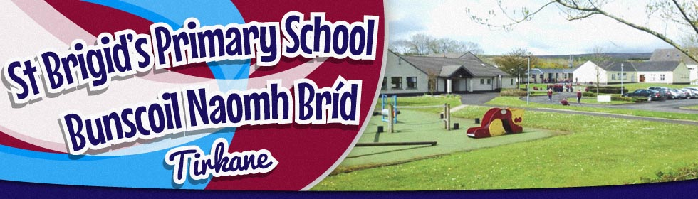 Killyhommon Primary School, Boho, Enniskillen